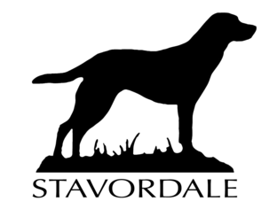 Stavordale - Raw Meat Dog Food